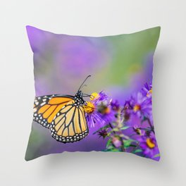 Monarch butterfly on aster purple flowers Throw Pillow