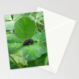 Bug in the rain Stationery Cards