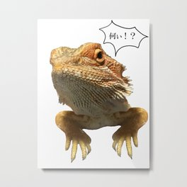 Impressive lovely lizard! Metal Print