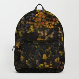 From Above Backpack