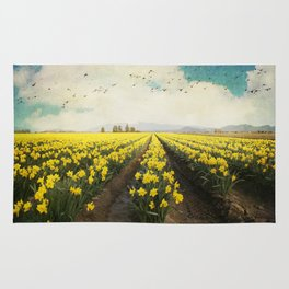 fields of daffodils Rug