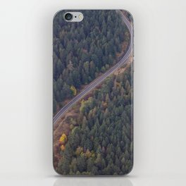 Road and Forest2 iPhone Skin