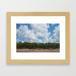peru - la selva Framed Art Print