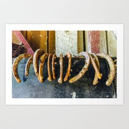 Rusty Horseshoes Collection Art Print
