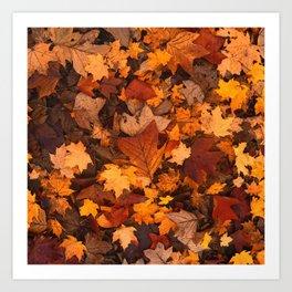 Autumn Fall Leaves Art Print