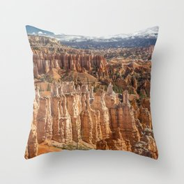 Below the Rim Throw Pillow