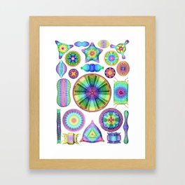 Ernst Haeckel Rainbow Diatoms Framed Art Print