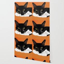Sylvester the cat Wallpaper