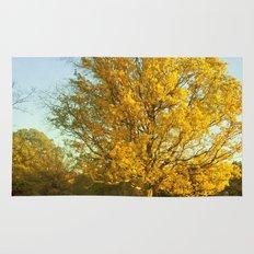 Yellow II Rug