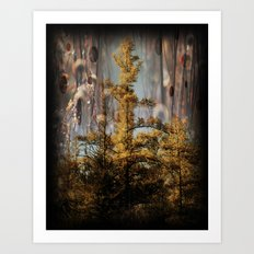 Swampy Forest Of Dreams Art Print