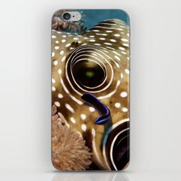 Puffer Fish Being Cleanced iPhone Skin