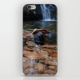 Leaves Underwater at Cascade Falls iPhone Skin