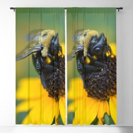 bee yellow Blackout Curtain