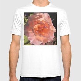 Peaches And Cream Rose In Soft Shadows And Sunlight T-shirt