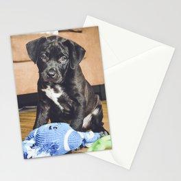 Otis 3 Stationery Cards