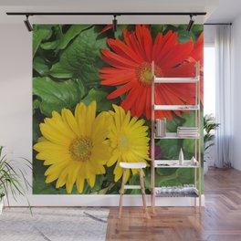 Colorful Daisies Wall Mural