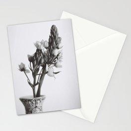 Ornithogalum Stationery Cards