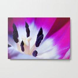 Macro Tulip Metal Print