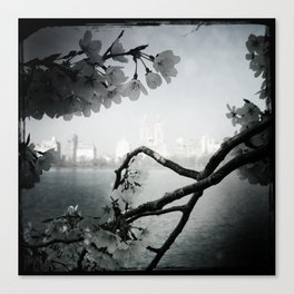 San Remo Behind Cherry Blossoms Canvas Print