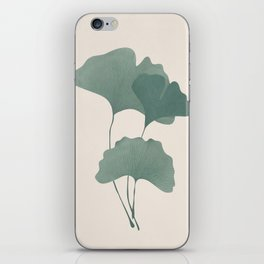 Ginko Leaves iPhone Skin