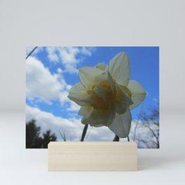 Daffodil Mini Art Print