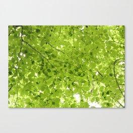 Leaves - JUSTART (c) Canvas Print