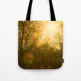 Golden Yellow Autumn Sunlight Tote Bag
