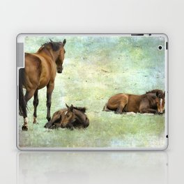 Mare and Two Foals Laptop & iPad Skin