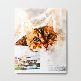 Cat With A Photograph Metal Print