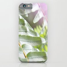 Fern + Photons iPhone 6s Slim Case