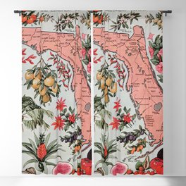 Map of Florida 1917 public domain vintage  Blackout Curtain