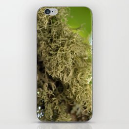 Branch Moss iPhone Skin
