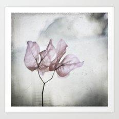 pale flower Art Print