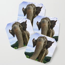 Elephant in Northern Thailand Coaster