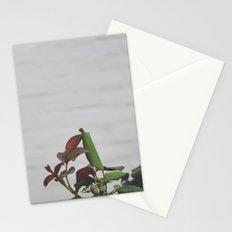 Rose Hips - No. 2 Stationery Cards
