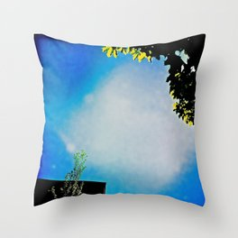 lantz45_IMG_1337 Throw Pillow