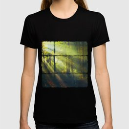 Rays - Morning Light in a Forest T-shirt