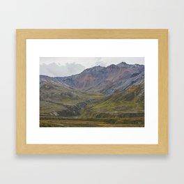 Natural Color Framed Art Print