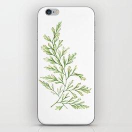 Fern Leaf Watercolor Painting iPhone Skin