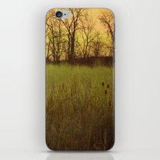 Morningtide - When Night is Left Behind iPhone & iPod Skin