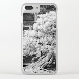 Bonsai Juniper Thrives in its Tray in a Japanese Garden Clear iPhone Case