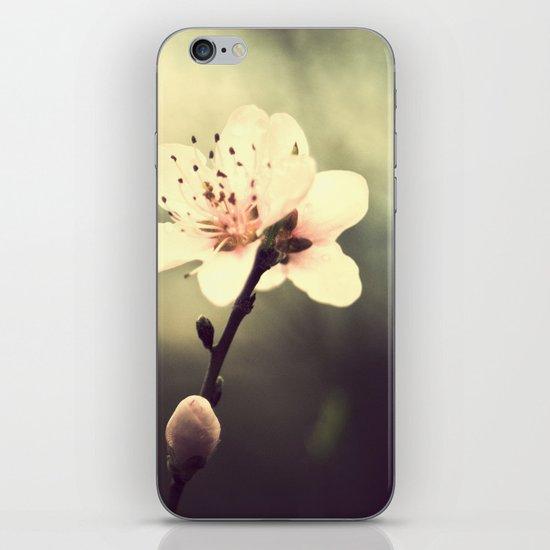 loreak iPhone & iPod Skin