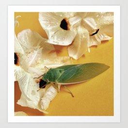 Friendly Green Cicada Art Print