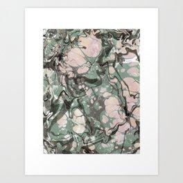 Evolution of Camouflage Art Print