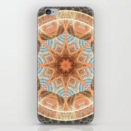 Mandalas of Forgiveness & Release 24 iPhone Skin