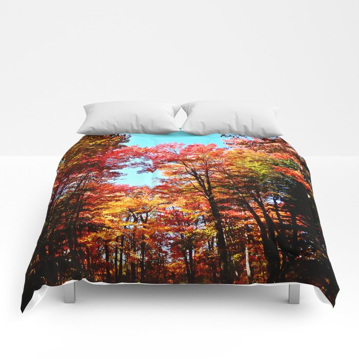 Fall Forest Delight Comforters