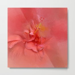 Salmon Hibiscus 2 - Floral Metal Print