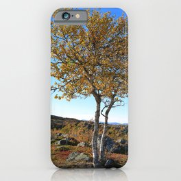 Autumn in the mountains a sunny day with blue sky. Birch with yellow leaves. iPhone Case