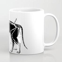 Cat Skeleton Anatomy Coffee Mug