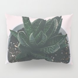 CACTUS - CLOSE UP - DIRT - LEAVES - MINIMALISM Pillow Sham